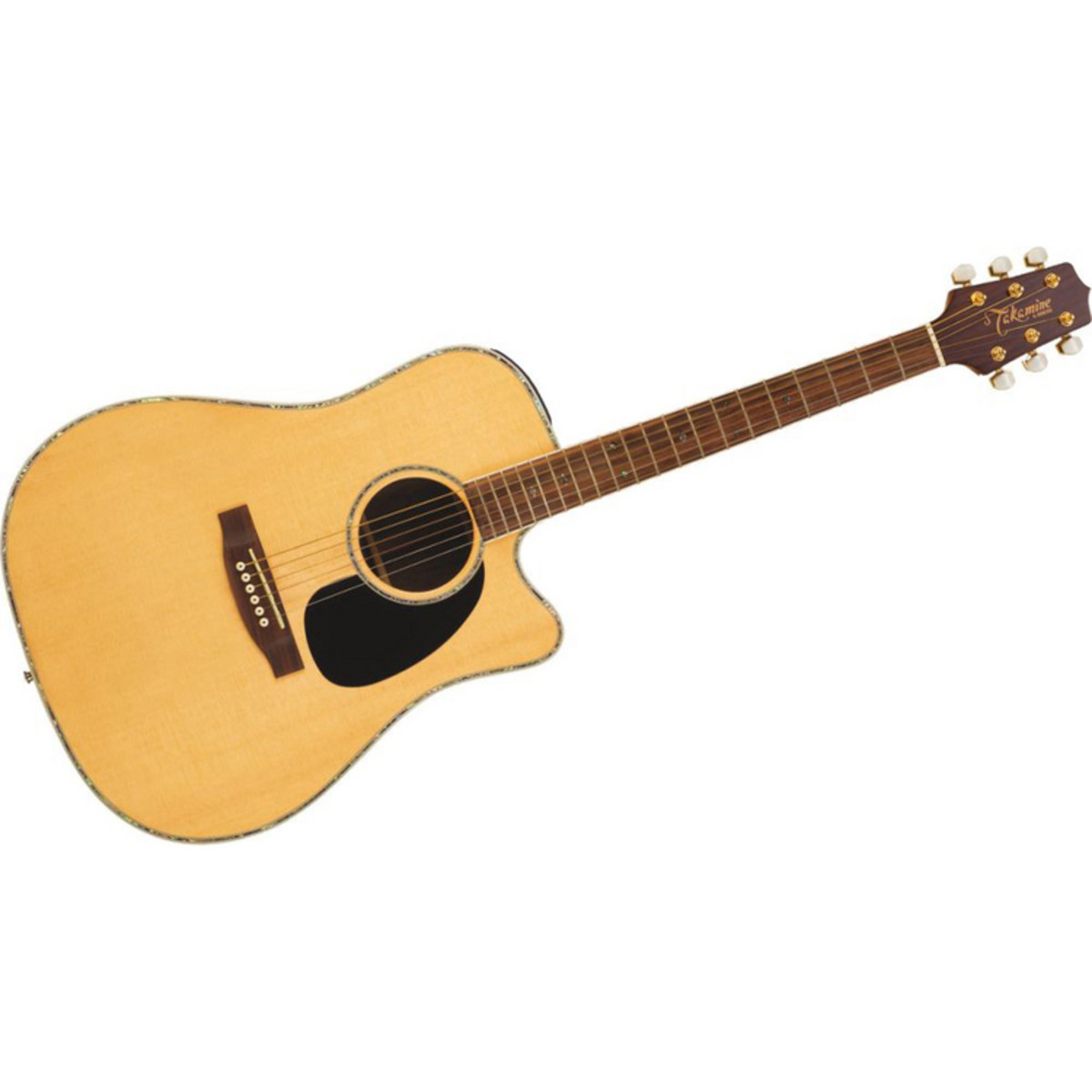 How to Date a Takamine Guitar