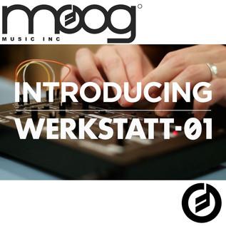 Moog Werkstatt-Ø1 Moogfest 2014 Kit