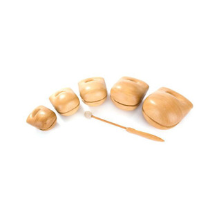 Percussion Plus Temple Blocks Set of 5