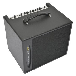 AER Amp One Bass Combo Amp 2