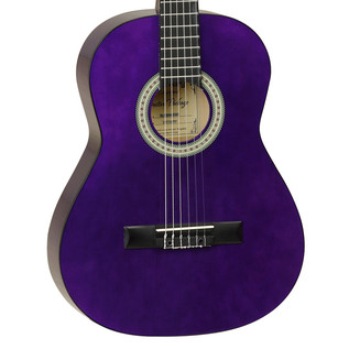 Tanglewood 3/4 Classical Acoustic Guitar, Trans Purple