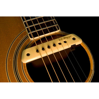 L.R. Baggs M1 Active Magnetic Soundhole Pickup