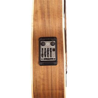 Warwick Alien Fretless Bass Guitar, Natural Satin