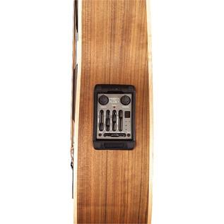 Warwick Alien Left Handed Fretless Bass,
