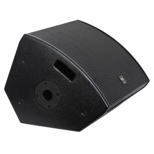 W Audio SM 12 Stage Monitor