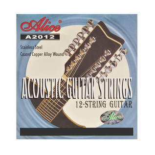 Alice 12 String Acoustic Guitar Strings