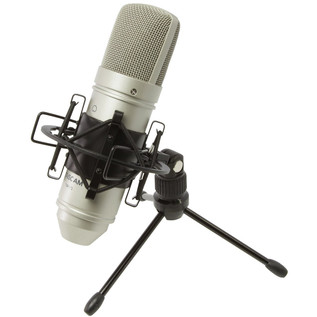 Tascam TM-80 Condenser Microphone - Mic With Stand