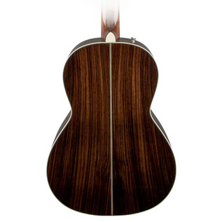 Fender PM-2 Deluxe Back Close