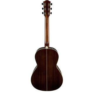 Fender PM-2 Deluxe Back