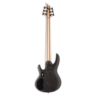 ESP LTD B-206SM 6 String Bass Guitar, See Thru Black Satin