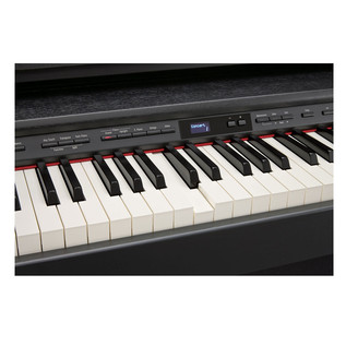 Roland DP-90e Keys