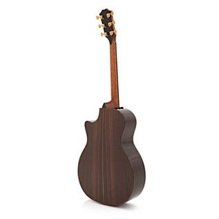 Taylor 914ce 2015 Model Grand Auditorium Electro Acoustic Guitar
