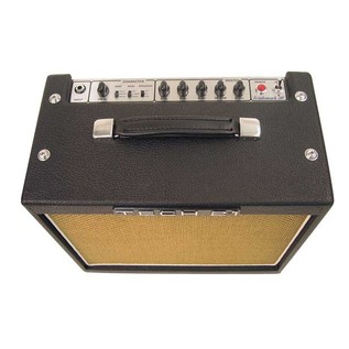 Tech 21 Trademark 30 Guitar Amp