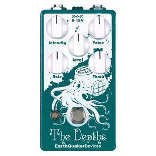 EarthQuaker Devices The Depths Optical Vibe Machine Top Panel