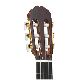 Takamine TH5C Headstock