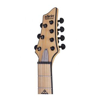 Jeff Loomis JL-7 Guitar