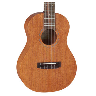Takamine GU-T1 Body Close