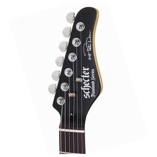 Schecter Pete Dee Signature PT Guitar