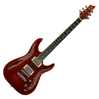 Schecter C-1 E/A Electric Guitar, Cat's Eye