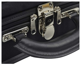 Negri Venezia Violin Case in Black and Green