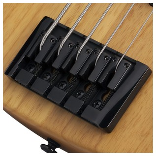 Schecter Model-T Session 5 String Bass
