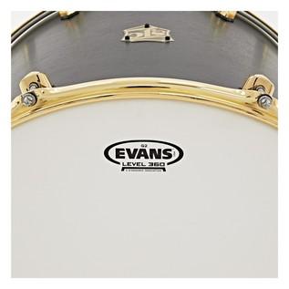 SJC Drums Tour Series 5 Piece Shell Pack brass