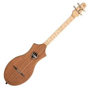 Seagull Guitars M4 G Mahogany