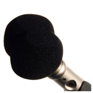 Rode WS4 Windshield / Pop Filter - In Use (Microphone Not Included)