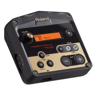 Roland TM2 Module,
