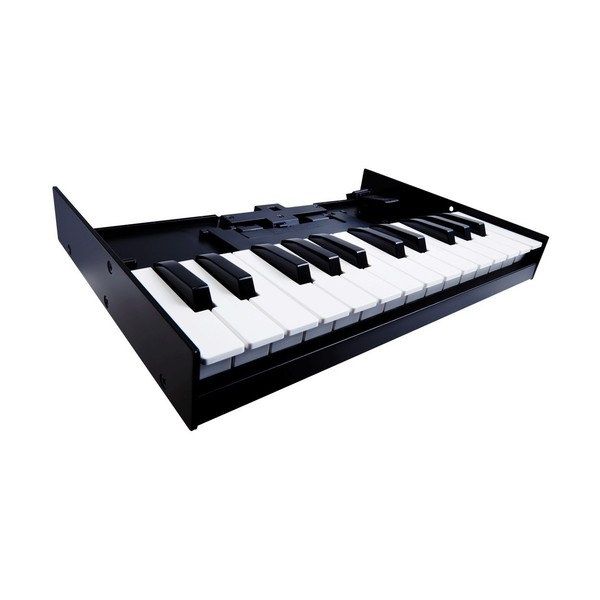 Roland Boutique TB-03 Module with K-25m Keyboard - Keys Angled