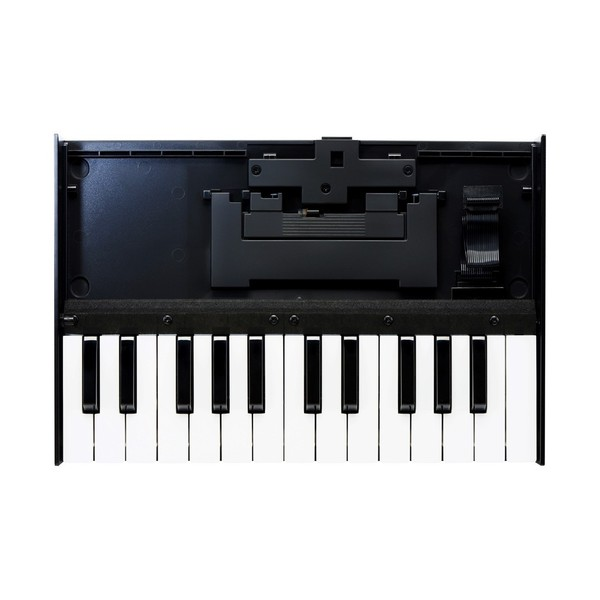 Roland Boutique TB-03 Module with K-25m Keyboard - Keys Top
