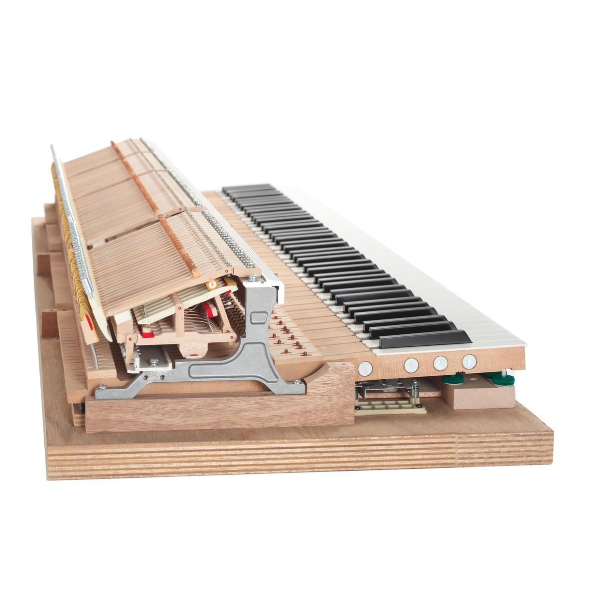Yamaha Montage 8 - questions - Piano World Piano & Digital