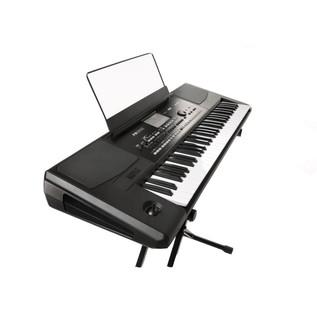 Korg PA300 Professional Keyboard