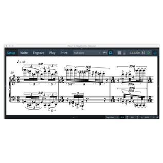 Steinberg Dorico Scoring Software Crossgrade, Educational - Screenshot 3