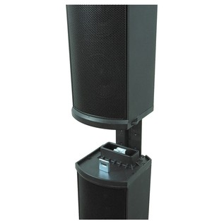 Bose L1 Model II Radiator Loudspeakers