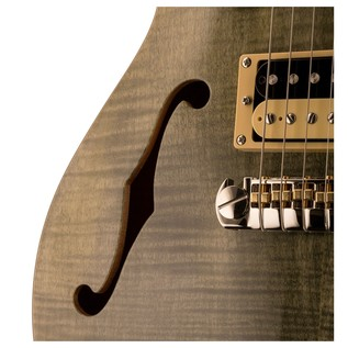 PRS SE Zach Myers F Hole