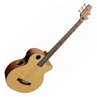 Boulder Creek EBR3 5 String Electro Acoustic Bass, Natural