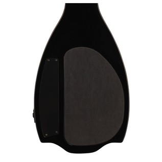 Epiphone Electar Lap Steel