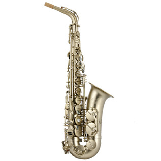 Trevor James Horn 88 Intermediate Alto Sax Brushed Gold