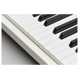 Mellotron M4000D-Mini, White - Detail 4