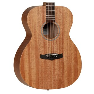 Tanglewood Winterleaf TW2 Acoustic Guitar, with Hard Case