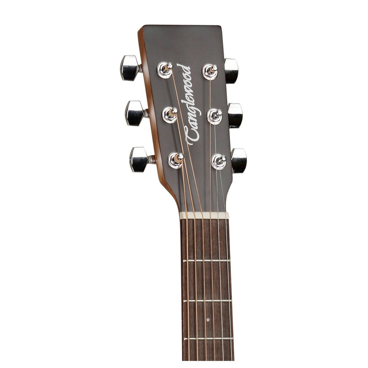 tanglewood tw2 winterleaf acoustic guitar with hard case at. Black Bedroom Furniture Sets. Home Design Ideas