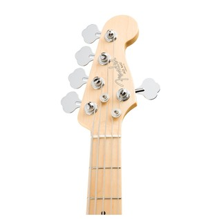 Fender American Pro Jazz V Bass Guitar Maple