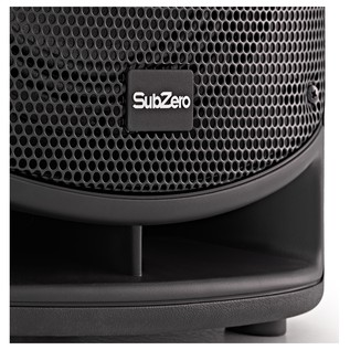 SubZero SZPA-P810 PA System with Microphones and Stands