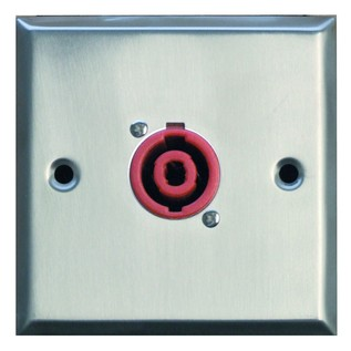 Eagle Metal AV Wall Plate With 1 x 2 Pole Speaker Connector