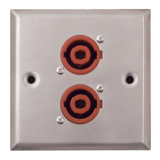 Eagle Metal AV Wall Plate With 2 x 4 Pole Connectors