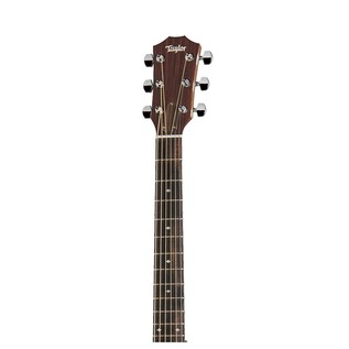 Taylor 210ce DLX 200 Series Electro Acoustic Guitar