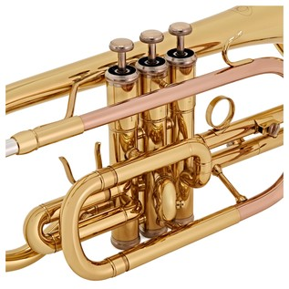 Coppergate Intermediate Cornet, Gold, By Gear4music