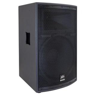 Peavey SP2 Speaker