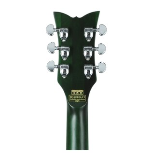 T S/H-1B Hollowbody Guitar, Green